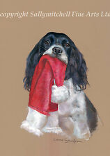 Springer Spaniel Christmas cards pack of 10 by Debbie Gillingham C462x