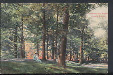 Essex Postcard - Ambresbury Banks, Epping Forest     RS8666