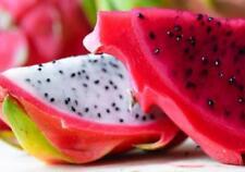 Dragon fruit/  RED Pitaya  Fresh  300 seeds: July 2017