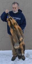 Tanned Cross Fox Hide, Wall Hanger, striking, fur, soft, crfxrfc