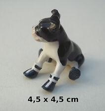 magnifique chien miniature porcelaine, Boston Terrier de collection, dog  B2-15