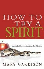 How To Try A Spirit: Identify Evil Spirits and the Fruit They Sow, Mary Garrison