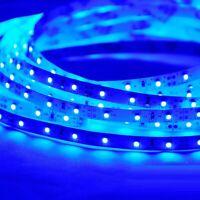 OTOE NICO Flexible Strip Light 5M Blue 6000K 12V SMD 2835 LED Waterproof