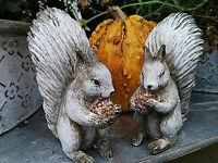 2 x Eichhörnchen Squirrel Dekoration Vintage Figuren Statue Eichhörnchen
