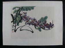 """wisteria"" après qi baishi c.1950's chinois aquarelle & woodblock print"
