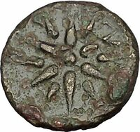 GAMBRION in MYSIA 4th-3rdCenBC Apollo Star Authentic Ancient Greek Coin i51836
