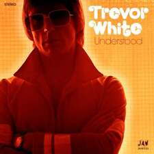 "Trevor White-Understood 7"" - RE 1976 GLAM Power Pop JOOK Sparks"