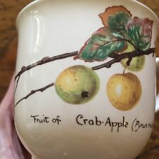 Vintage Noritake Country Diary Edwardian Lady Coffee Mug Tea Cup Crab Apple 1977