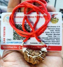 Rudraksha 1 One Mukhi Ek Facet Rudraksh Hindu Yoga Prayer AA++ Lab Certified