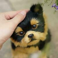 Realistic Dog Toys Plush Pomeranian Toy Doll Stuffed Gifts 2020 Kids Animal V5J2