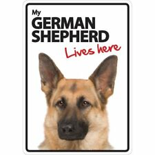 German Shepherd Lives Here A5 Plastic Sign