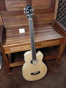 Epiphone El Capitan acoustic/electric bass guitar 5 string fretless with case
