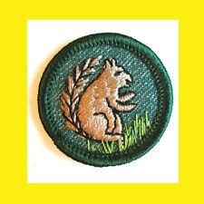 Mammal-Land Animal Girl Scout Intermediate Badge 1950s Squirrel Volume Discount