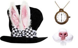 White Rabbit March Hare Alice In Wonderland Tea Party Set World Book Week