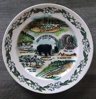 "VTG GREAT SMOKEY MOUNTAINS SOUVENIR Ceramic PLATE 9"" GRAPHICS COLORFUL ~ RARE"