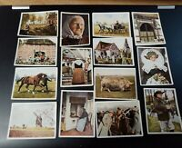 Collection x 39 German * On German Soil * Pre WW2 Colour Photo Cigarette Cards