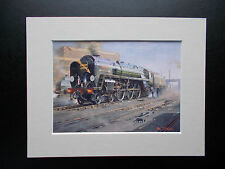 RAILWAY PRINTS - IRON DUKE AND THE SHED CAT
