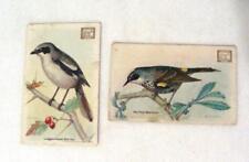 USEFUL BIRDS M E EATON #9 #18 Cow Brand Soda Church & Dwight Trade Cards