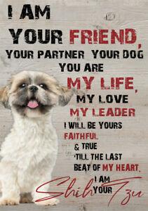 METAL SIGN SHIH TZU DOG SIGN PRINT METAL DOG GIFT XMAS BIRTHDAY GIFT DOG POSTER