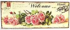 Blechschild Dekoschild Schild Welcome to our Home Willkommen Rosen Shabby 20x50
