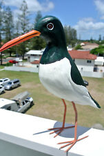 OYSTER CATCHER pied hand made & painted carved wood 27 cm high statue BIRD