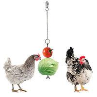Hanger Chicken Feeder Vegetables Hanging Feeder Feed Dispenser Feeding Station