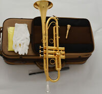 Concert Professional Gold Plated Trumpet Horn Bb Monel Piston W/Case
