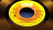 AMAZING RHYTHM ACES - The End Is Not In Sight - 1976 VG++ CANADA PRESSING 45