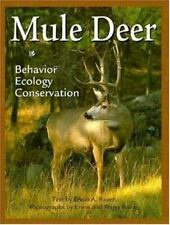 Mule Deer by Bauer, Erwin