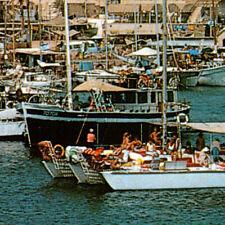 Eilat Red Sea Sailboats Boats Postcard Israel