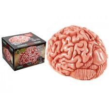18cm Urban Zombie Brain Money Bank Gift Toy Large Bo Novelty Piggy Box Ceramic
