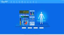 2018 quantum magnetic resonance body analyzer with 6th generation version