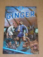 Pirate Pain D/'Épice Feutre Décoration de Noël Capitaine Ginger avec jambe de bois