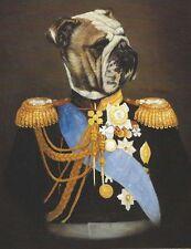 English Bulldog - Vintage Dog Art Print - Poncelet