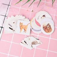 40pcs decoration label diary paper sticker cat scrapbooking cartoon NSN~