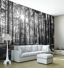 Wall Mural Photo Wallpaper SUNNY SPRING MORNING FOREST Living Room Decor 335x236