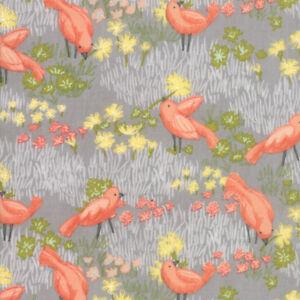 Dandi Annie 48631-14 Moda Robin Pickens  Priced per ½ Yard