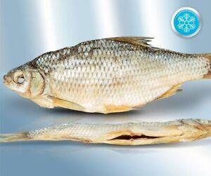 Gedörrte Plötze ca.500g Trockenfisch un ausgenommen