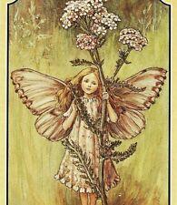 1930 Pink Yarrow Girl Fairy Brown Hair Elf Cicely Mary Barker Fantasy Print 4258