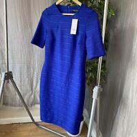 *BNWT* DOROTHY PERKINS Blue Short Sleeve SIZE 12 UK Bodycon Knee Length Dress