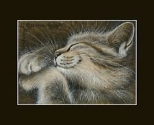 Sepia Cat ACEO Summer Meditation Print by I Garmashova