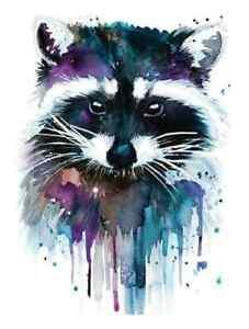 cute raccoon iron on t shirt transfer A5