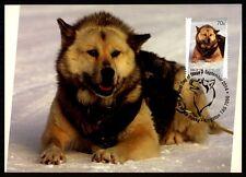 AAT ANTARCTIC MK SCHLITTENHUNDE HUNDE HUND DOG CARTE MAXIMUM CARD MC CM bq11