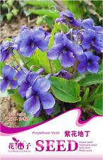 Original Package 50 Viola Philippica Seeds Viola Yedoensis Makino Flowers A186