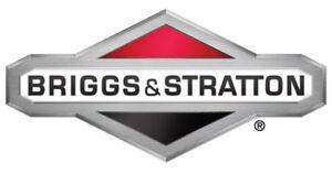Briggs & Stratton OEM B4363GS replacement cap-fuel gauge