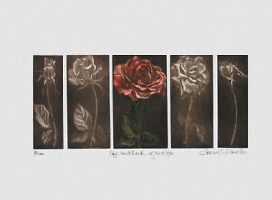 Susan JAMESON, Maniera nera anno 2004 cm. 38x56 (inc. cm. 35,5x15,5) es: 3/200