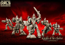 Raging Heroes Sisters of Eternal Mery Knights of the Chalice Command Group