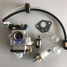 Carburetor F Thunderbay Y43 Auger Power Head Y2007 Mini Cultivator 430025 Plug