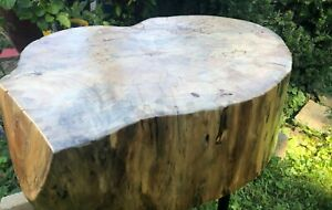 """Maple Live Edge Accent Table - Extra Thick (4 3/4""""+) Top - Black Metal Pipe Legs"""
