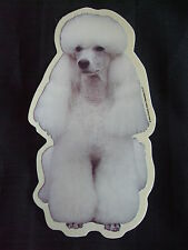 GRAND AUTOCOLLANT - motif chien   CANICHE  BLANC N°1